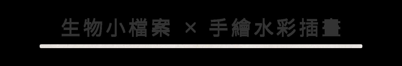 生物小檔案x手繪水彩插畫