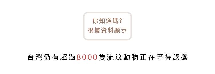 台灣仍有超過八千隻流浪動物