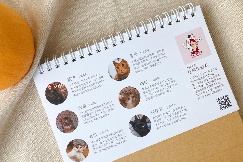動保團體的聯絡資訊與認養貓咪的故事