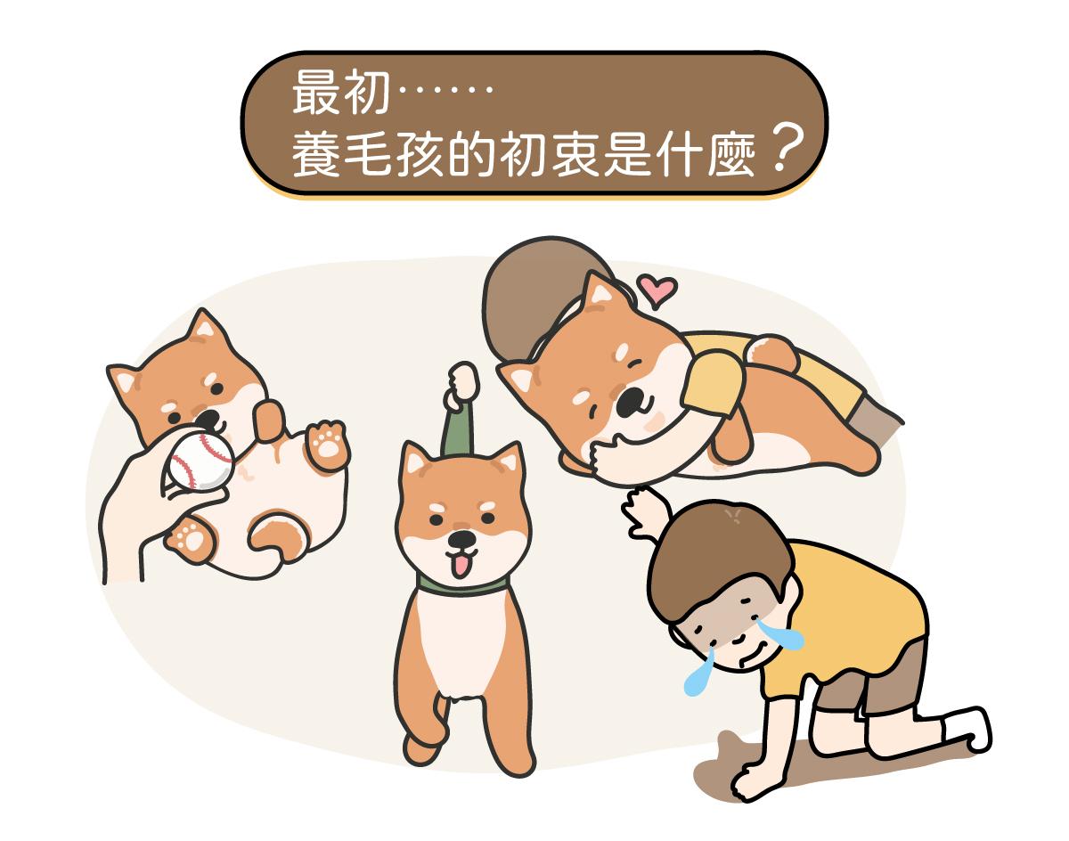 人和狗狗在互動,玩球散步